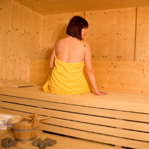 dundalk leisure craft pure cube sauna